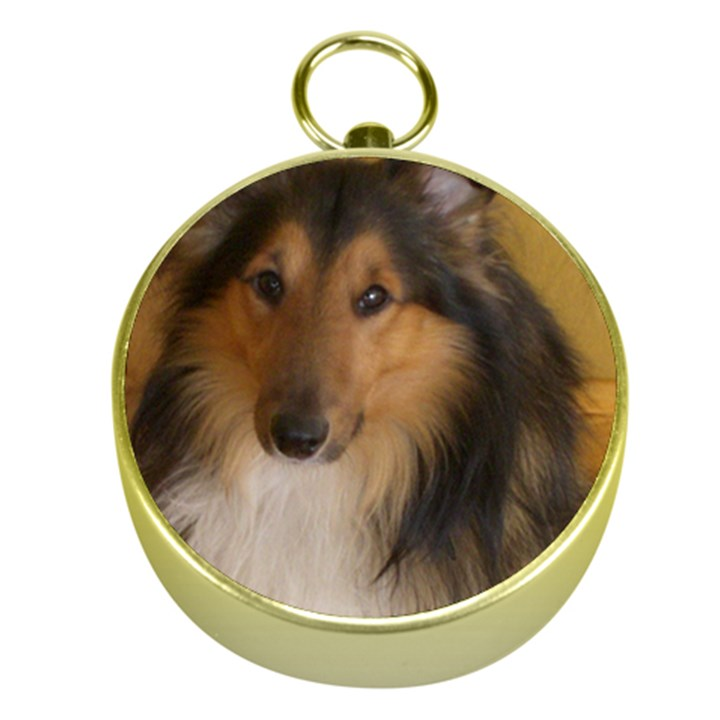Shetland Sheepdog Gold Compasses