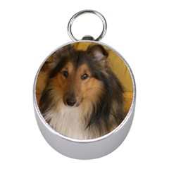 Shetland Sheepdog Mini Silver Compasses
