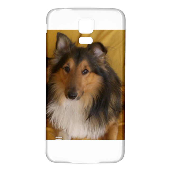 Shetland Sheepdog Samsung Galaxy S5 Back Case (White)