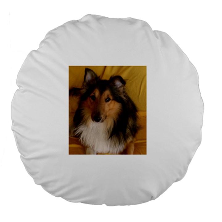 Shetland Sheepdog Large 18  Premium Flano Round Cushions