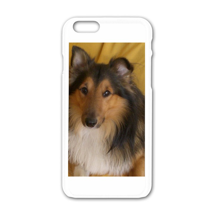 Shetland Sheepdog Apple iPhone 6/6S White Enamel Case