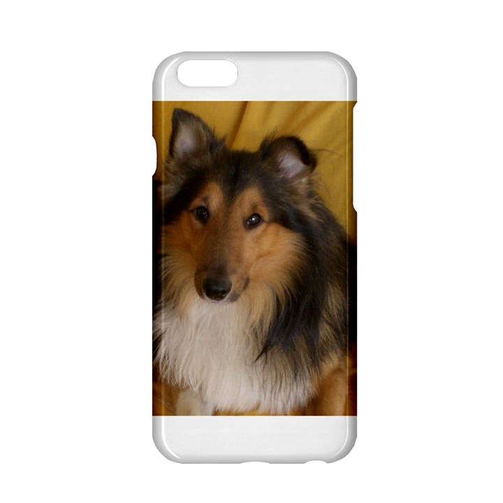 Shetland Sheepdog Apple iPhone 6/6S Hardshell Case