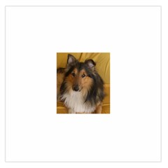 Shetland Sheepdog Large Satin Scarf (Square)