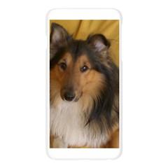 Shetland Sheepdog Apple Seamless iPhone 6 Plus/6S Plus Case (Transparent)