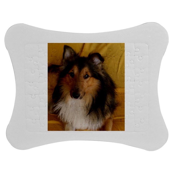 Shetland Sheepdog Jigsaw Puzzle Photo Stand (Bow)