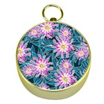 Whimsical Garden Gold Compasses Front