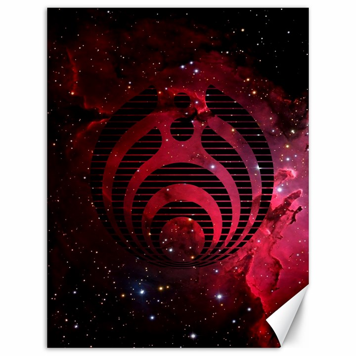 Bassnectar Galaxy Nebula Canvas 12  x 16