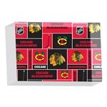 Chicago Blackhawks Nhl Block Fleece Fabric 4 x 6  Acrylic Photo Blocks Front