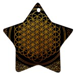 Bring Me The Horizon Cover Album Gold Star Ornament (Two Sides)  Back