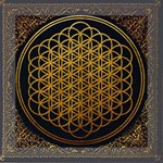 Bring Me The Horizon Cover Album Gold Mini Canvas 8  x 8  8  x 8  x 0.875  Stretched Canvas