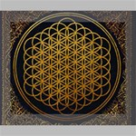 Bring Me The Horizon Cover Album Gold Canvas 10  x 8  10  x 8  x 0.875  Stretched Canvas