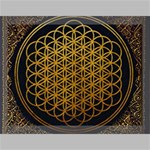 Bring Me The Horizon Cover Album Gold Canvas 16  x 12  16  x 12  x 0.875  Stretched Canvas