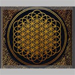 Bring Me The Horizon Cover Album Gold Canvas 20  x 16  20  x 16  x 0.875  Stretched Canvas