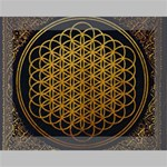 Bring Me The Horizon Cover Album Gold Deluxe Canvas 16  x 12   16  x 12  x 1.5  Stretched Canvas