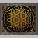 Bring Me The Horizon Cover Album Gold Deluxe Canvas 20  x 16   20  x 16  x 1.5  Stretched Canvas