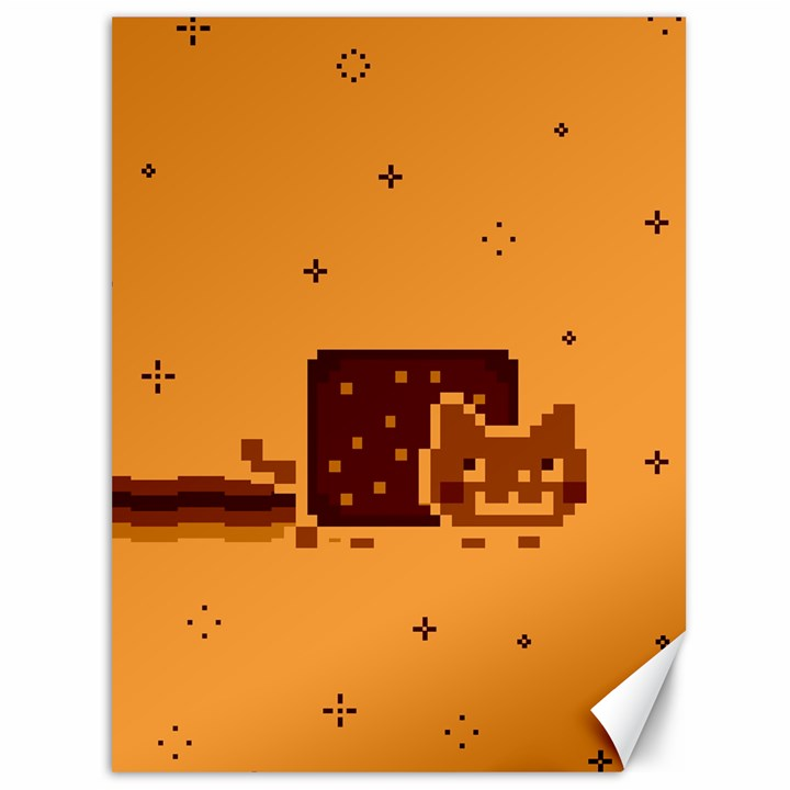 Nyan Cat Vintage Canvas 36  x 48