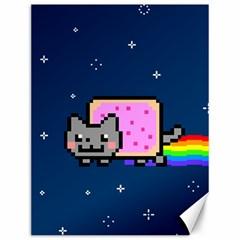 Nyan Cat Canvas 12  x 16