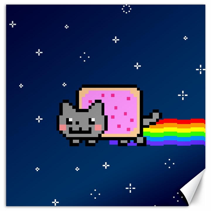 Nyan Cat Canvas 16  x 16