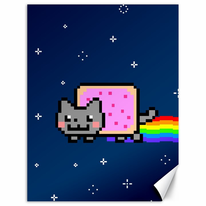 Nyan Cat Canvas 18  x 24