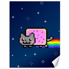 Nyan Cat Canvas 36  x 48