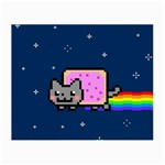 Nyan Cat Small Glasses Cloth (2-Side) Front