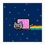 Nyan Cat Medium Glasses Cloth Front