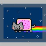 Nyan Cat Canvas 10  x 8  10  x 8  x 0.875  Stretched Canvas