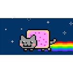 Nyan Cat Twin Hearts 3D Greeting Card (8x4) Front