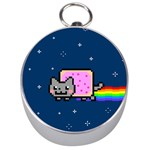 Nyan Cat Silver Compasses Front