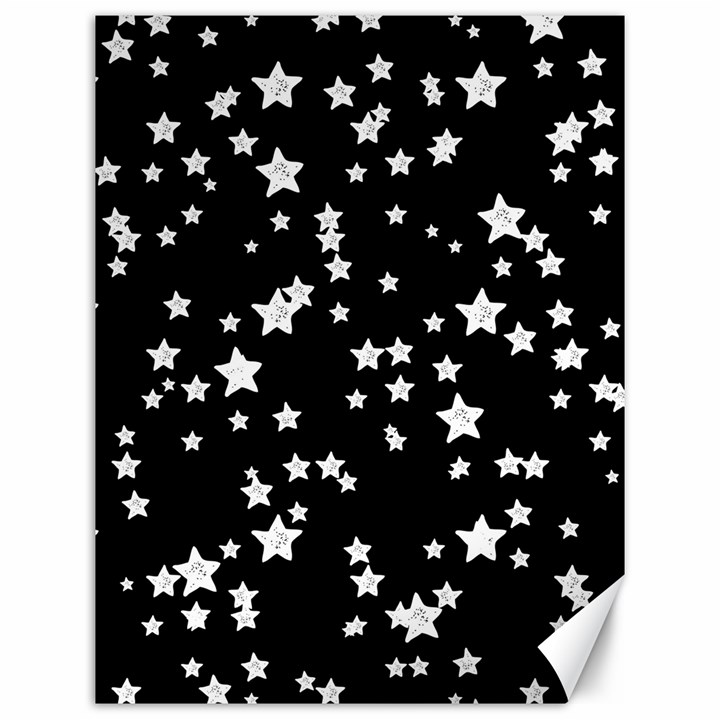 Black And White Starry Pattern Canvas 12  x 16