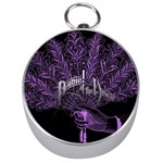 Panic At The Disco Silver Compasses Front
