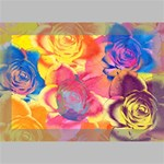 Pop Art Roses Deluxe Canvas 18  x 12   18  x 12  x 1.5  Stretched Canvas
