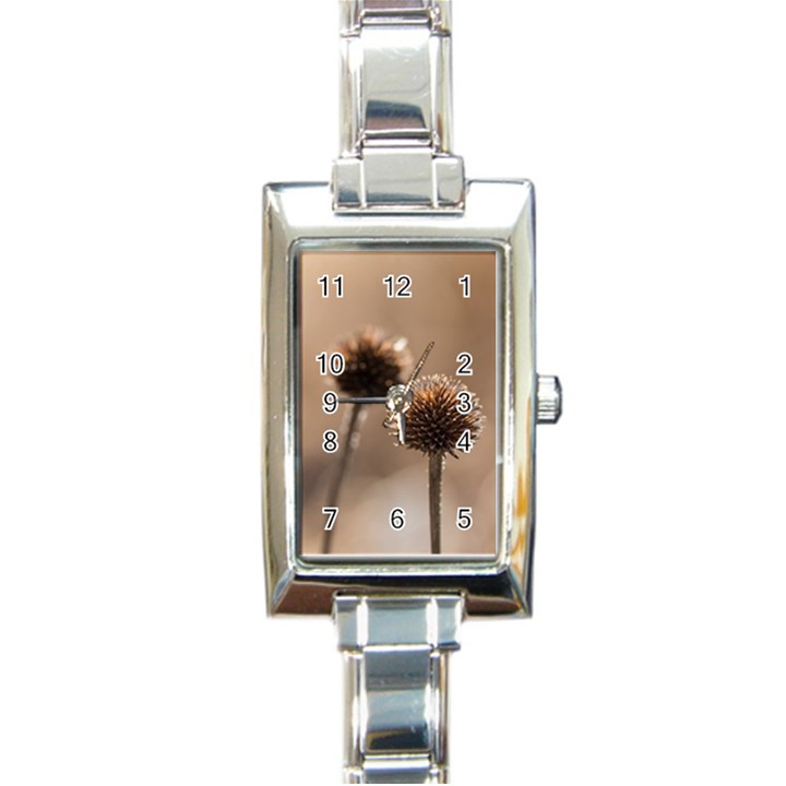 2  Verwelkte Kugeldistel Rectangle Italian Charm Watch