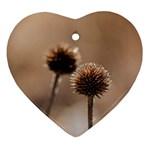 2  Verwelkte Kugeldistel Ornament (Heart)  Front
