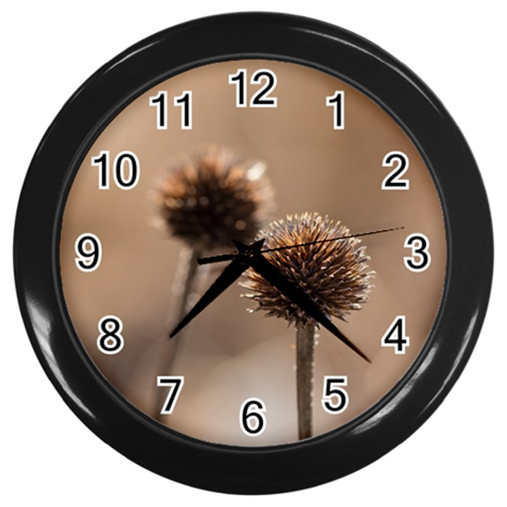 2  Verwelkte Kugeldistel Wall Clocks (Black)