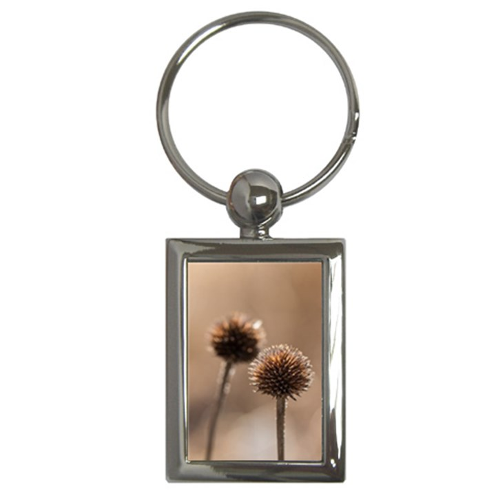 2  Verwelkte Kugeldistel Key Chains (Rectangle)