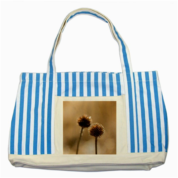 2  Verwelkte Kugeldistel Striped Blue Tote Bag