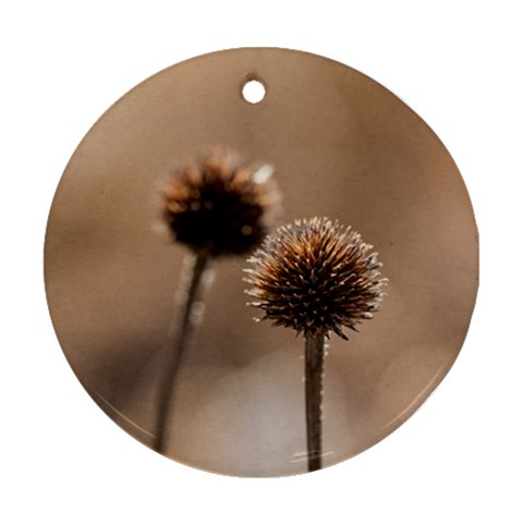 2  Verwelkte Kugeldistel Round Ornament (Two Sides)