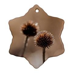 2  Verwelkte Kugeldistel Snowflake Ornament (2 Side)