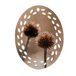 2  Verwelkte Kugeldistel Oval Filigree Ornament (2-Side)  Front