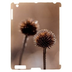 2  Verwelkte Kugeldistel Apple iPad 2 Hardshell Case (Compatible with Smart Cover)