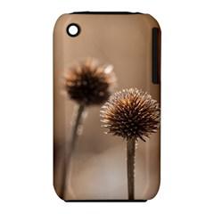 2  Verwelkte Kugeldistel Apple iPhone 3G/3GS Hardshell Case (PC+Silicone)