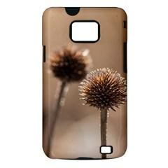 2  Verwelkte Kugeldistel Samsung Galaxy S II i9100 Hardshell Case (PC+Silicone)