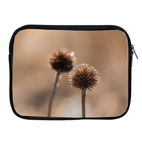2  Verwelkte Kugeldistel Apple iPad 2/3/4 Zipper Cases