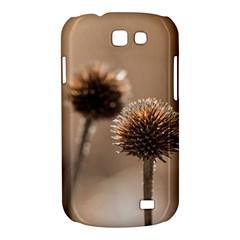 2  Verwelkte Kugeldistel Samsung Galaxy Express I8730 Hardshell Case