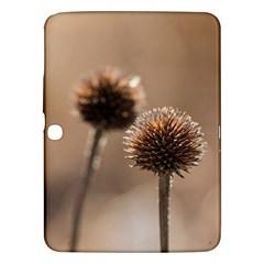 2  Verwelkte Kugeldistel Samsung Galaxy Tab 3 (10.1 ) P5200 Hardshell Case