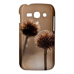 2  Verwelkte Kugeldistel Samsung Galaxy Ace 3 S7272 Hardshell Case