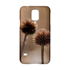 2  Verwelkte Kugeldistel Samsung Galaxy S5 Hardshell Case