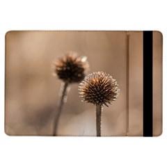 2  Verwelkte Kugeldistel iPad Air Flip