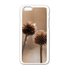 2  Verwelkte Kugeldistel Apple iPhone 6/6S White Enamel Case